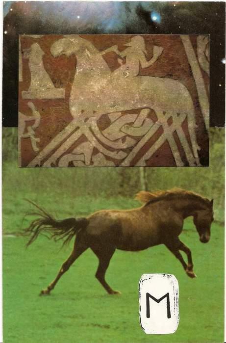 Старший Футарк. Скандинавская мифология. 64292539_1285047035_ehwaz