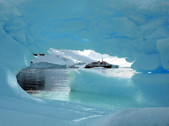 Антарктида 79520