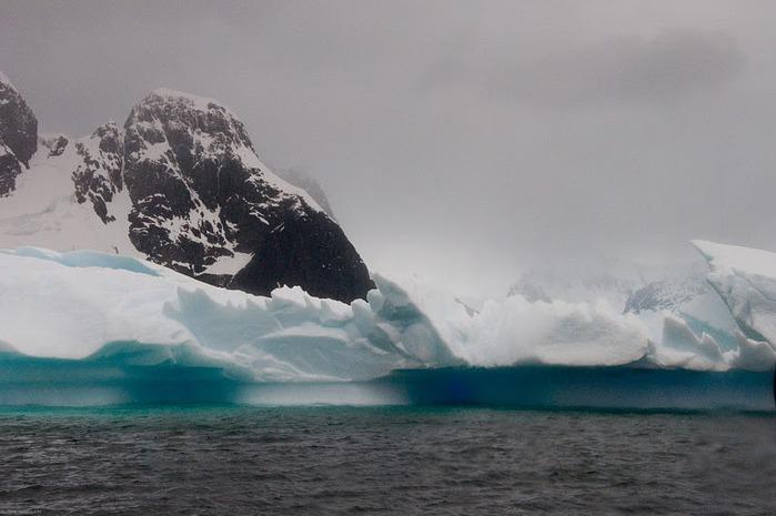 Антарктида 50720