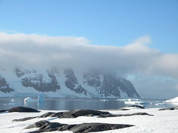 Антарктида 90963