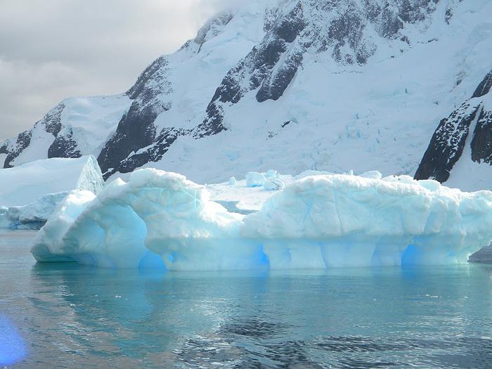 Антарктида 47972