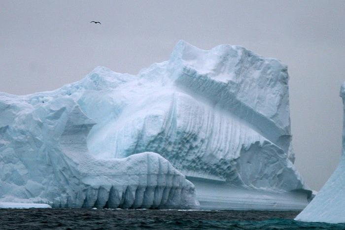 Антарктида 63506