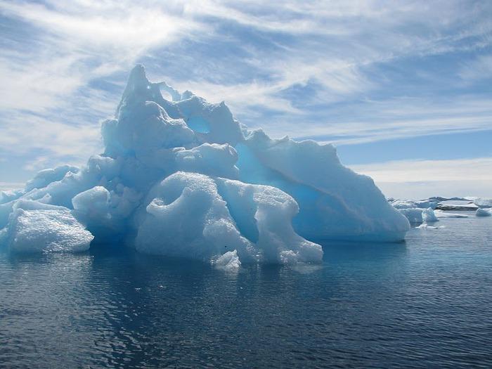 Антарктида 62240