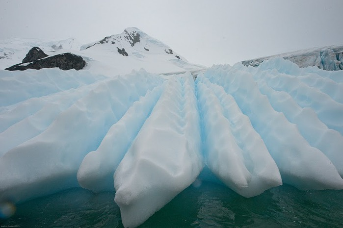 Антарктида 99727