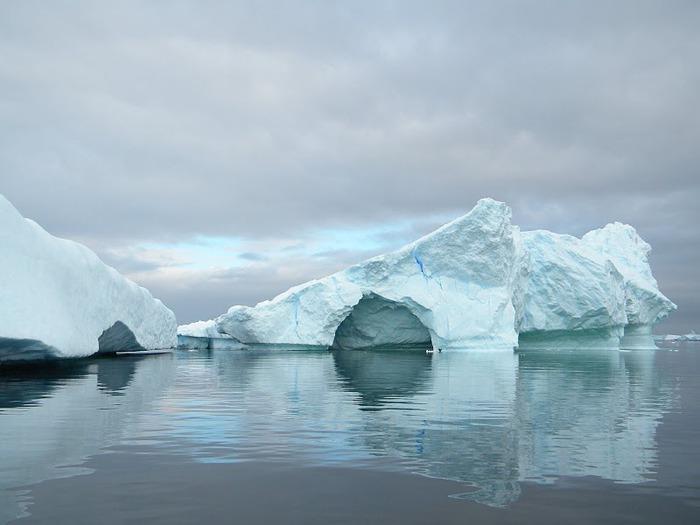 Антарктида 66202