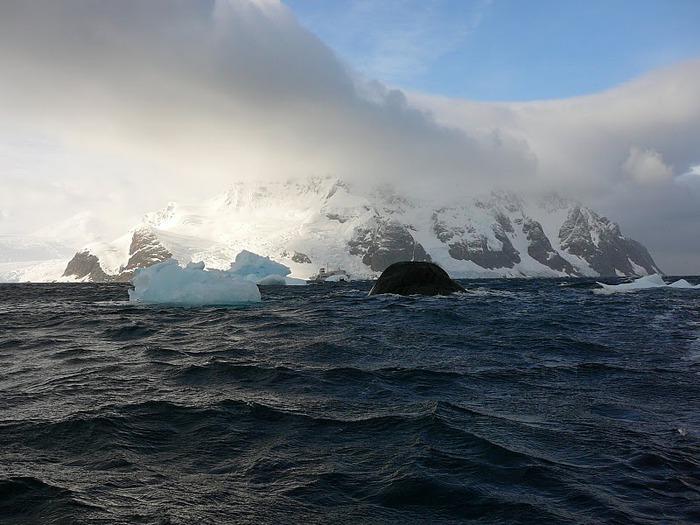 Антарктида 96235