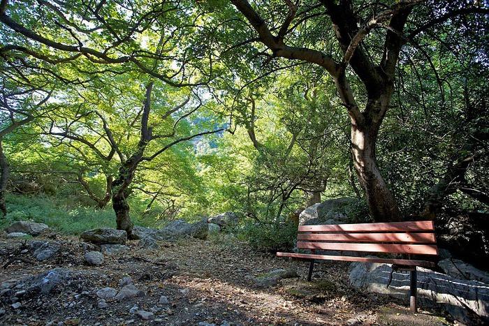 Остров Карпатос - высокие горы, традиционные поселки, пляжи на юге... 15756