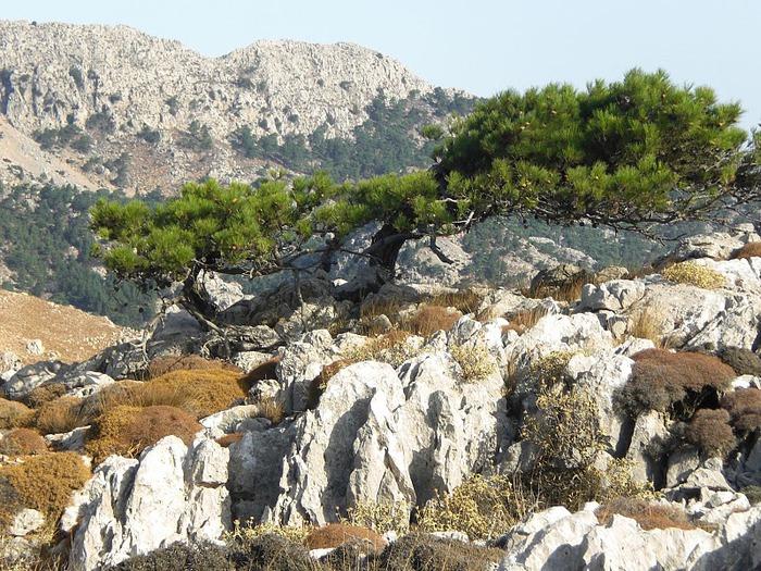 Остров Карпатос - высокие горы, традиционные поселки, пляжи на юге... 82308
