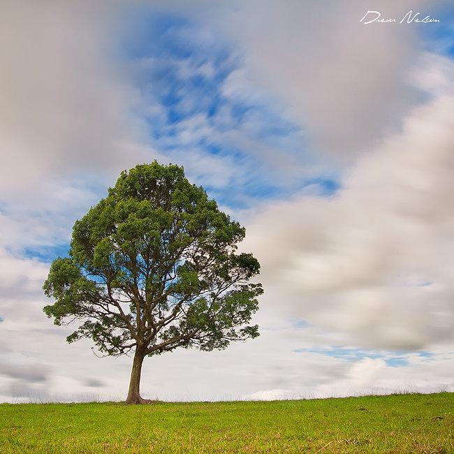 Пейзажи фотографа Drew Hopper 32