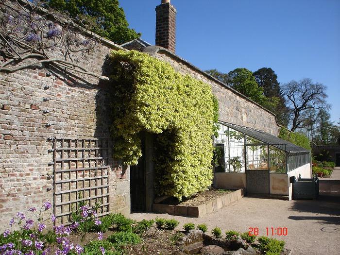 Замок Фрейзер (Castle Fraser) 25112