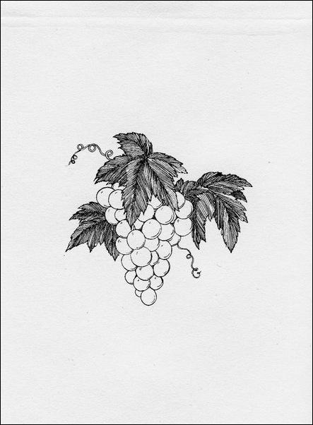 Картинки иллюстрации к Рубаи Омара Хайяма английского иллюстратора Рональда Бэлфура 41