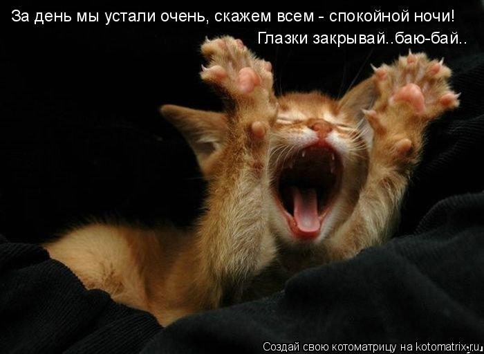 http://img1.liveinternet.ru/images/attach/c/2//64/628/64628446_1285720715_ip.jpg
