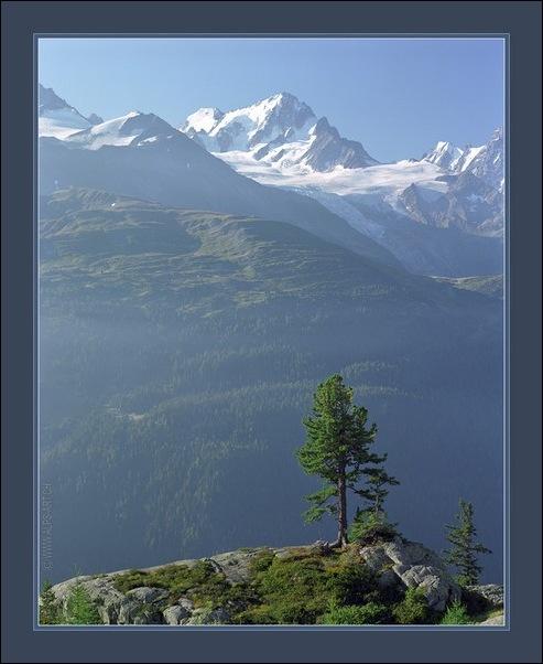 Выше гор могут быть выше только горы 11