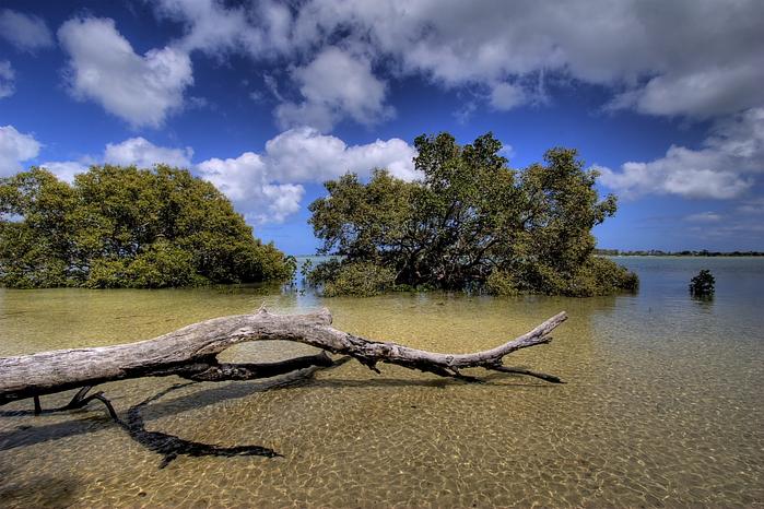 Oстров Фрейзер — объект всемирного достояния человечества и самый большой песчаный остров в мире. 96795