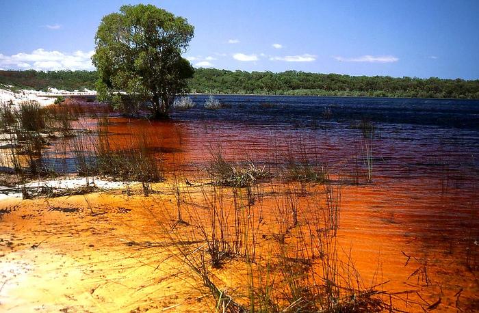 Oстров Фрейзер — объект всемирного достояния человечества и самый большой песчаный остров в мире. 36199
