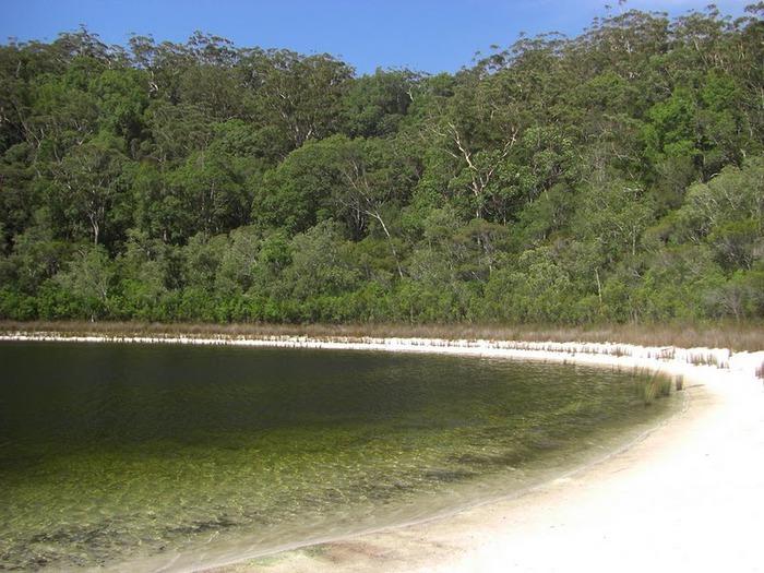 Oстров Фрейзер — объект всемирного достояния человечества и самый большой песчаный остров в мире. 98025