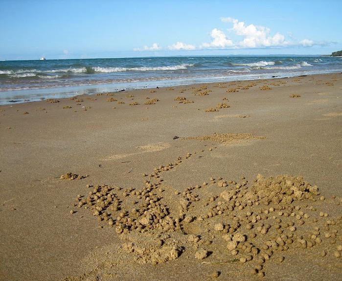 Oстров Фрейзер — объект всемирного достояния человечества и самый большой песчаный остров в мире. 57867