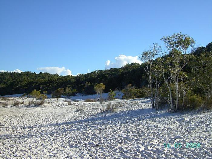 Oстров Фрейзер — объект всемирного достояния человечества и самый большой песчаный остров в мире. 61015