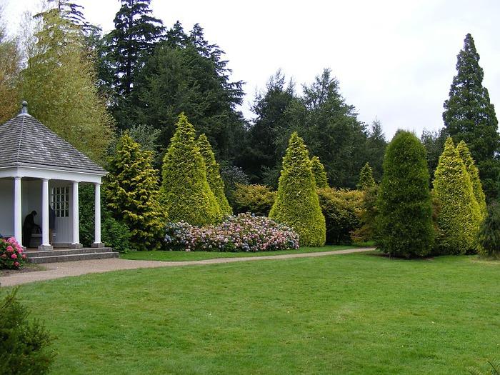 Nymans Gardens 68722