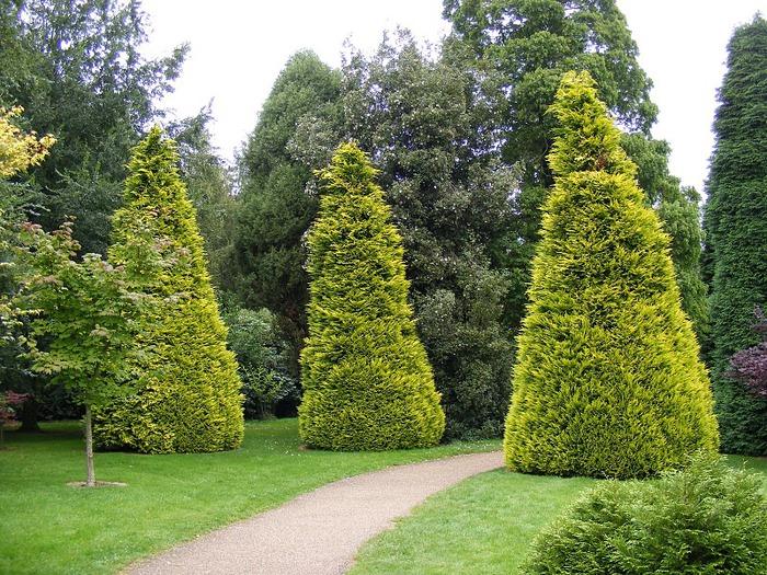 Nymans Gardens 50153