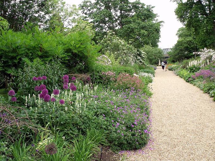 Nymans Gardens 52934
