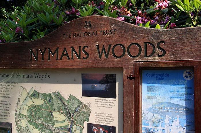 Nymans Gardens 84689