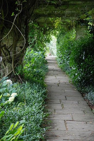 Nymans Gardens 92822
