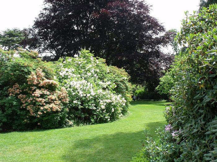 Nymans Gardens 47110