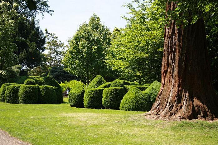 Nymans Gardens 23377