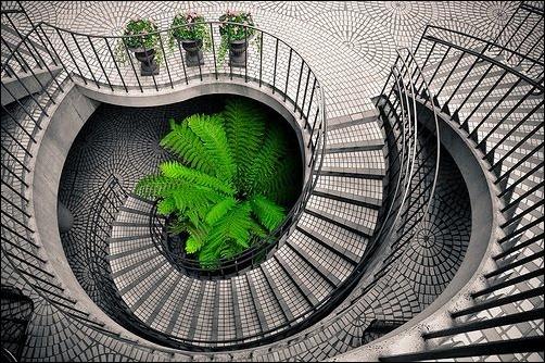 45 спиральных лестниц 9