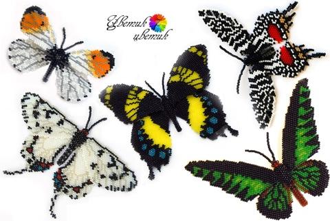Еще одна бабочка по