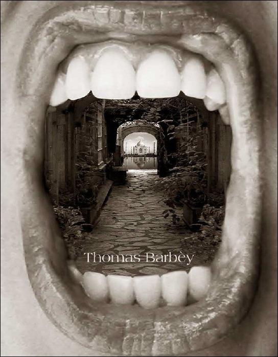 Волшебный мир фотохудожника Thomas Barbey 37