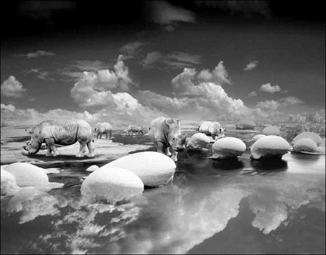 Волшебный мир фотохудожника Thomas Barbey 56