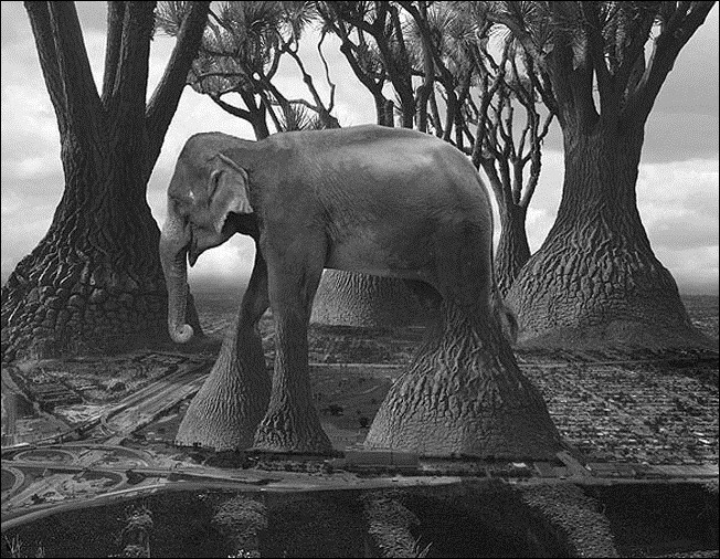 Волшебный мир фотохудожника Thomas Barbey 62