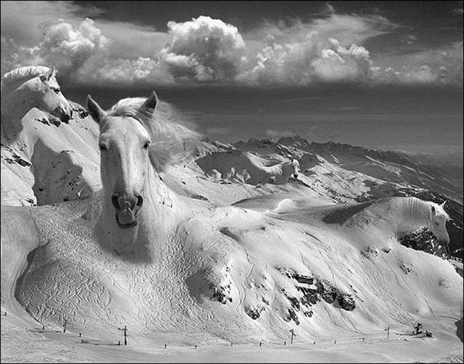 Волшебный мир фотохудожника Thomas Barbey 70