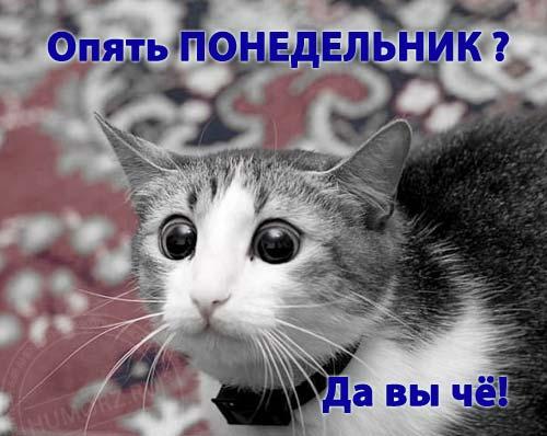 http://img1.liveinternet.ru/images/attach/c/2//65/152/65152399__2262413_9715931.jpg