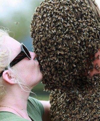 Конкурс лучшей «бороды» из пчел прошел в Канаде 13282