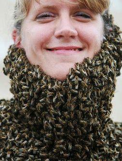 Конкурс лучшей «бороды» из пчел прошел в Канаде 41195