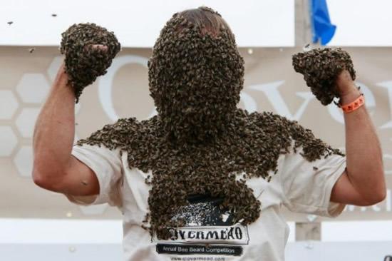 Конкурс лучшей «бороды» из пчел прошел в Канаде 58271