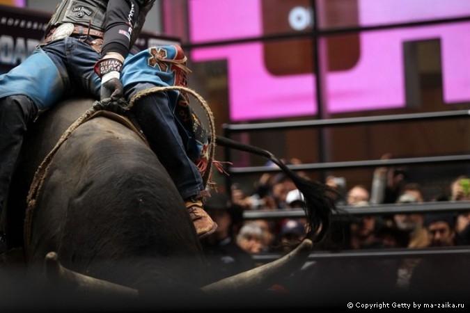 ���������������� Bull Riders (PBR) �� �����-����� � ���-�����, 15 ������� 2010 ����.