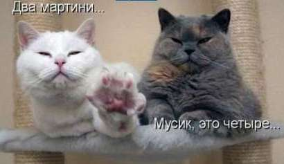 http://img1.liveinternet.ru/images/attach/c/2//65/385/65385902_1287250883_savapmi.jpg
