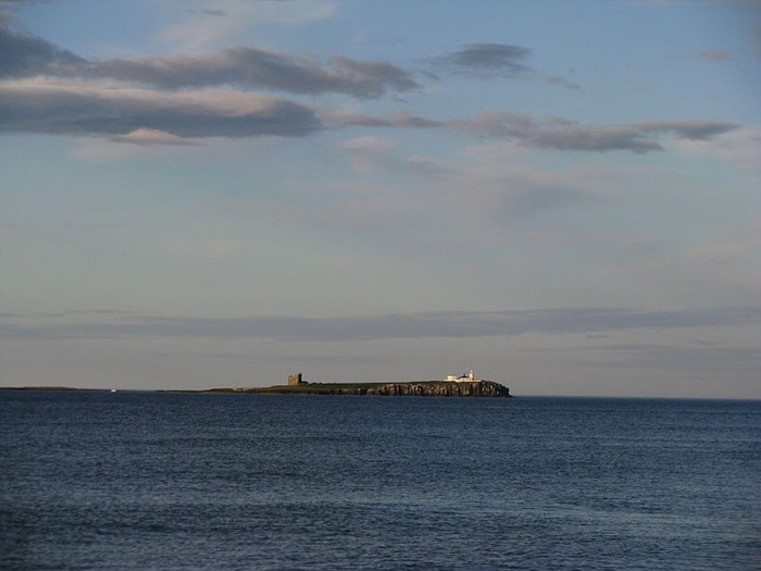 Farne Islands 69493