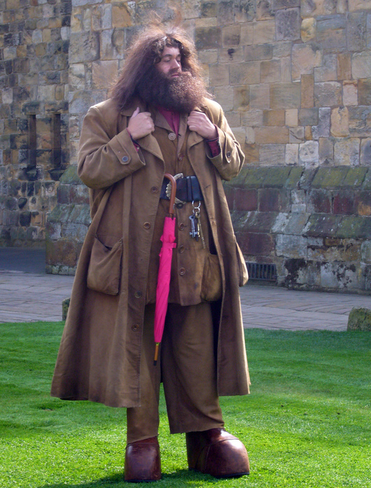 Замок Гарри Поттера - Замок Алник - Alnwick Castle 78709