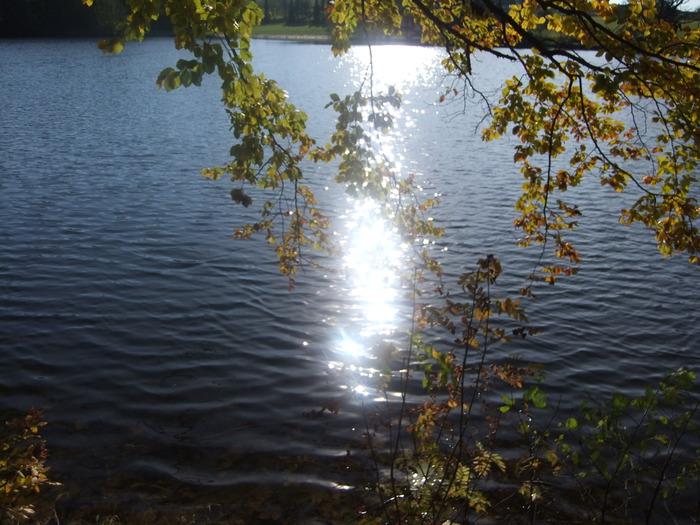 Осенний денёк на озере в Лангенау, Саксония 24924