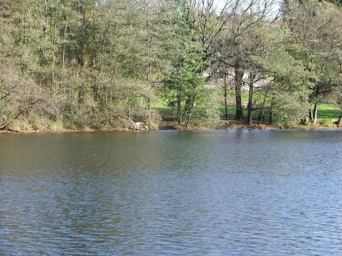 Осенний денёк на озере в Лангенау, Саксония 88003