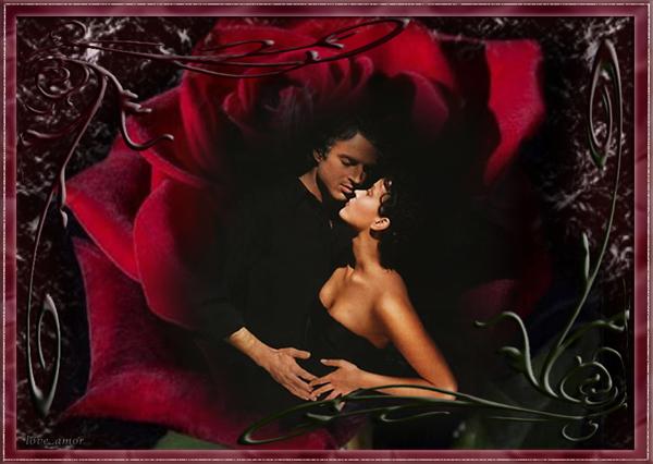roza_tango_a1 (600x426, 190 Kb)