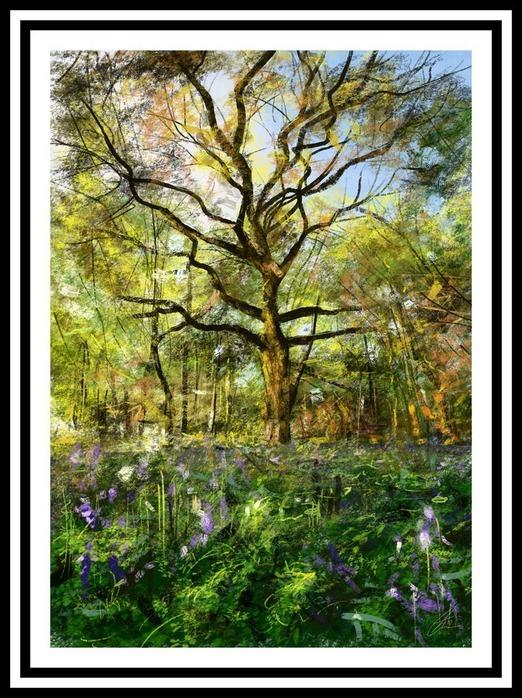 Великолепные пейзажи Джона Мортимера 158
