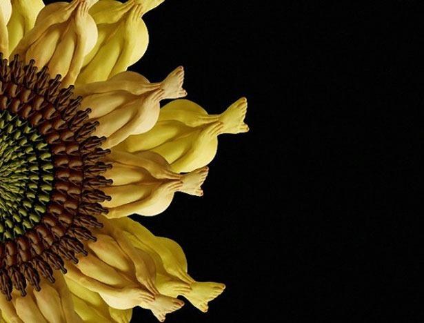 Креативные цветы из людей 1