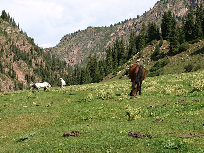 Киргизия-Фотозарисовки. 93583