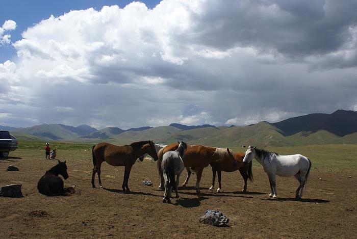 Киргизия-Фотозарисовки. 68137